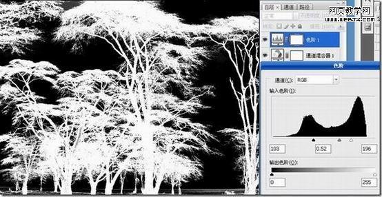 利用PS反相操作抠出复杂树木的抠图教程