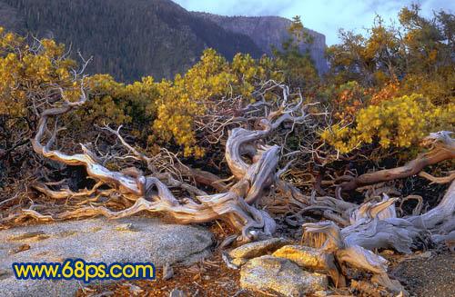Photoshop调出橙蓝色彩效果的山林风景照片