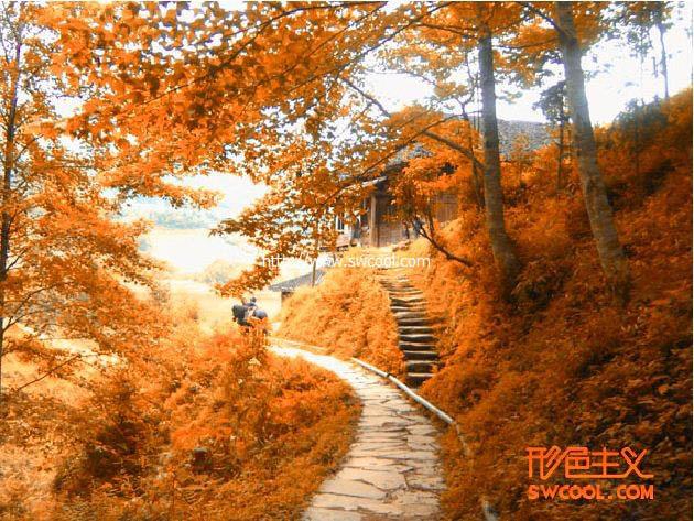 Photoshop通道调色调出秋天橙色风景照片