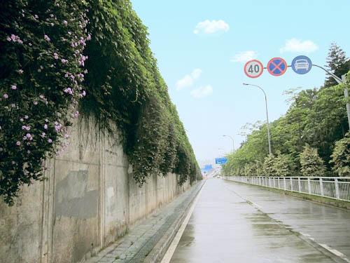 Photoshop给城市街道照片调色美化处理教程