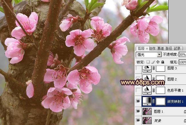 Photoshop调出漂亮唯美粉红色的桃花照片
