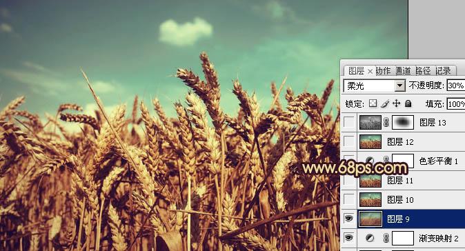 Photoshop调制藏青色色彩效果的小麦照片