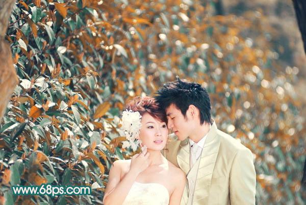 Photoshop调出橙黄色树叶背景的婚纱照片教程