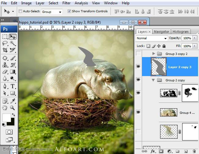 Photoshop合成另类鸟巢中孵化出的河马图片