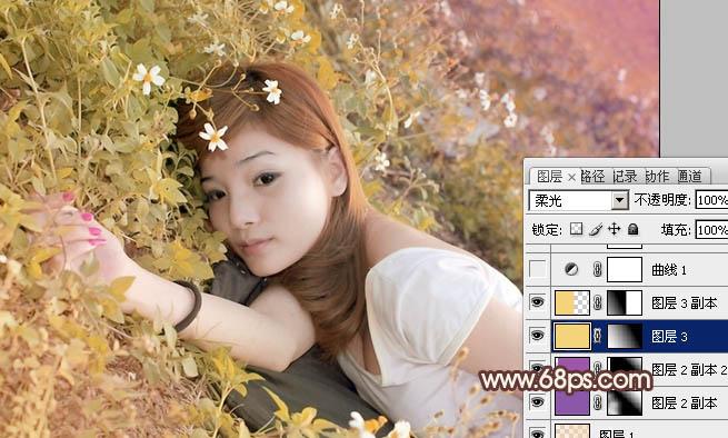 Photoshop调出红褐色过渡色彩的草地女孩图片