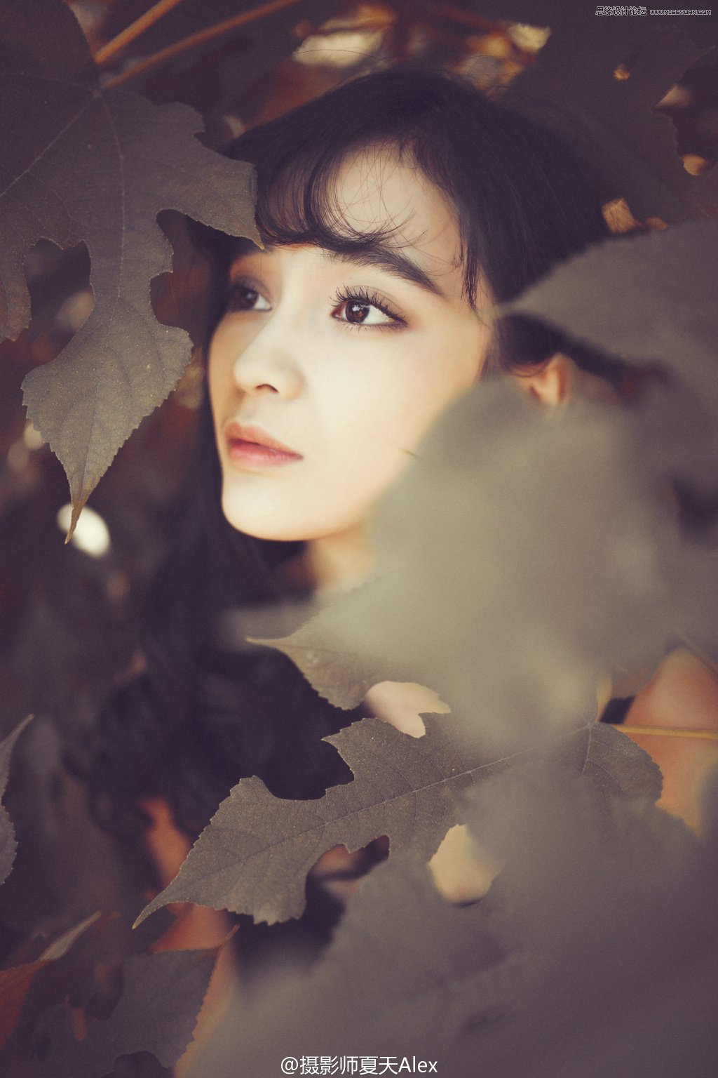 Photoshop调出树下美女人像秋季电影胶皮效果