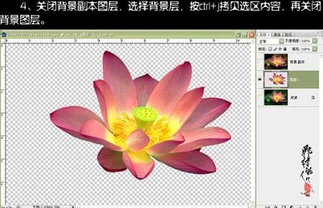 使用Photoshop快速通道抠出荷花抠图教程