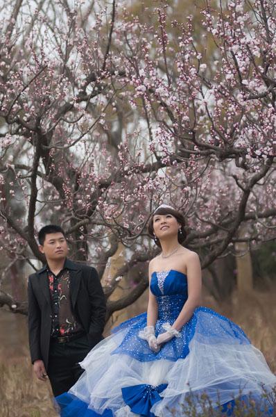 PS把灰暗桃花背景婚纱照片调成艳丽阳光色彩