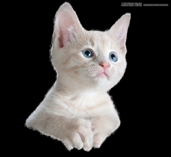 Photoshop合成乘鞋环游大海的小猫图片教程