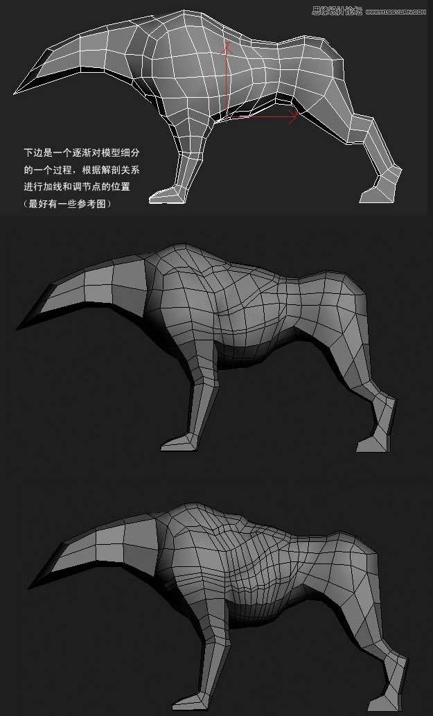 3ds MAX实例教程:多边形建模小狗