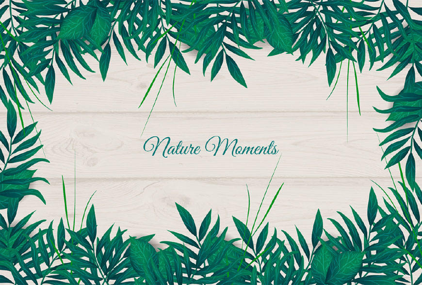 Illustrator绘制自然主题风格的绿叶背景